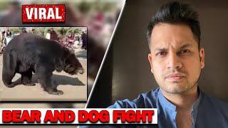 BEAR AND DOG FIGHT IN PAKISTAN | AZLAN SHAH