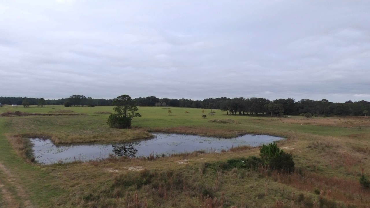 Interlachen, Florida