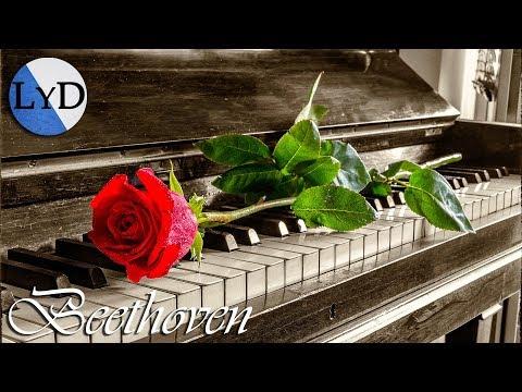 Beethoven Música Clásica Relajante de Piano para Estudiar y Concentrarse, Trabajar, Leer, Relajarse