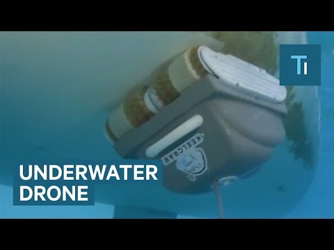 This Underwater Drone Cleans Your Boat