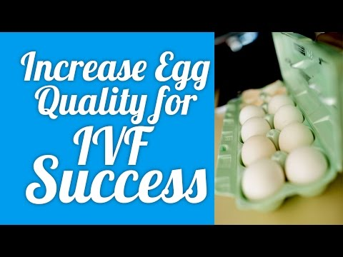 increase-egg-quality-for-ivf-success!