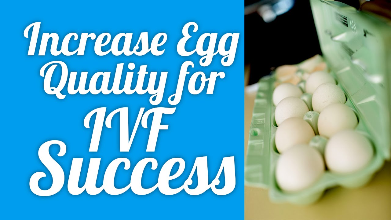 Increase Egg Quality for IVF success! - YouTube