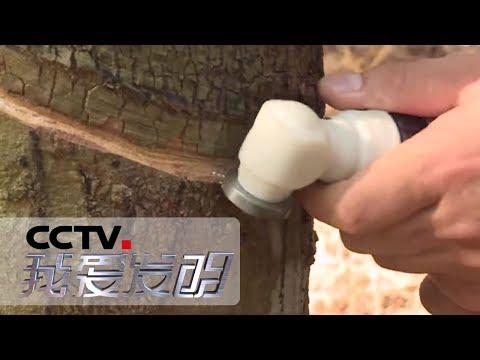 《我爱发明》 智慧农田2:电动胶刀 集装箱养鱼池 秸秆捆捡拾机 20190626 | CCTV科教