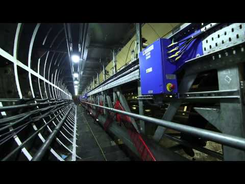 Canada Water station escalators - Tube improvements