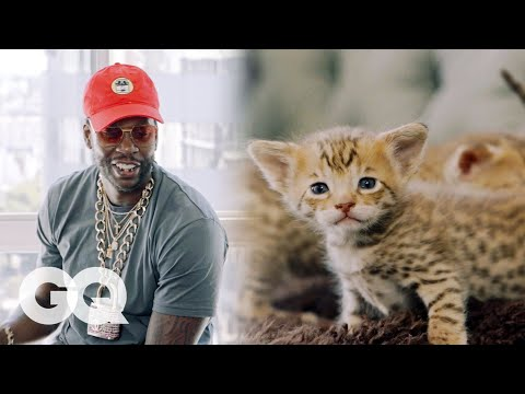 2 Chainz Plays with $165,000 Kittens   Most Expensivest Shit   GQ