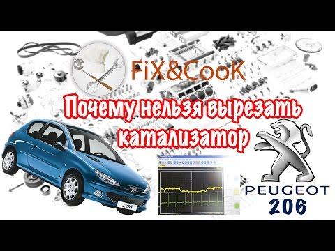 Почему нельзя вырезать катализатор Peugeot 206