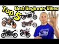 Top 5 Best Beginner Motorcycles - First Time Riders