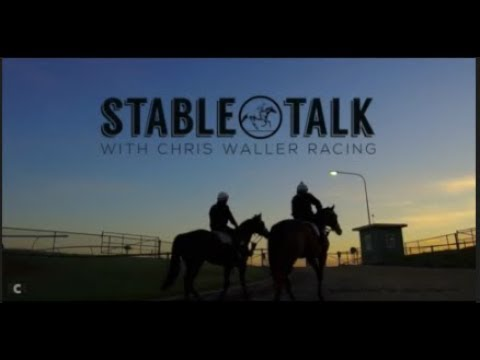 """Stable Talk"" - Weekly Update - 11th January 2018 - Chris Waller Racing"