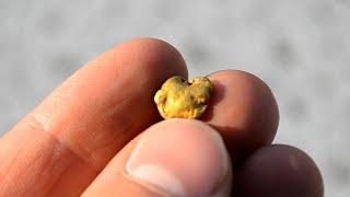 Encontró oro en un río