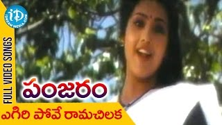 Panjaram Movie - Egiri Pove Video Song || Meena || Vinod Kumar || Kota Srinivasa Rao || Raj thumbnail