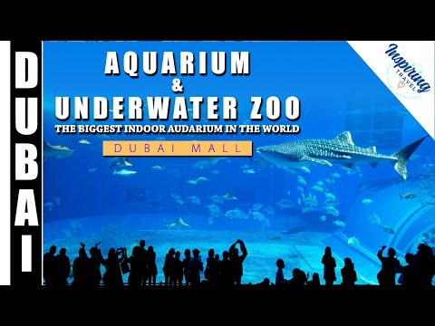 Largest Indoor #Aquarium in the world – Dubai Mall Aquarium & Underwater Zoo