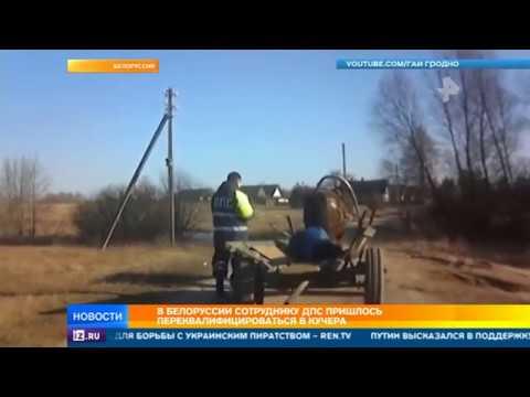 Белорусскому инспектору пришлось везти домой мертвецки пьяного извозчика на его лошади
