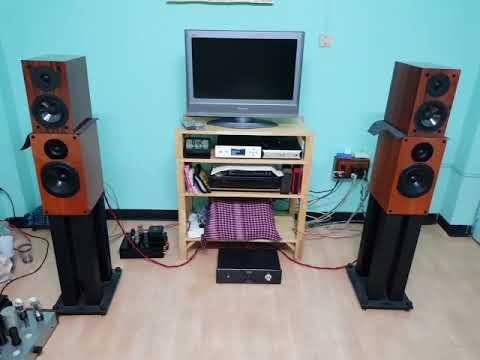 Musical Paradise MP 303 + DSD Music Player+ลำโพง MP S 1 MK2 Ch man
