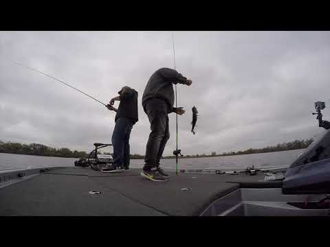 Fall Bass Fishing 2018 - Underwater video included! Bass, Musky and Pike action