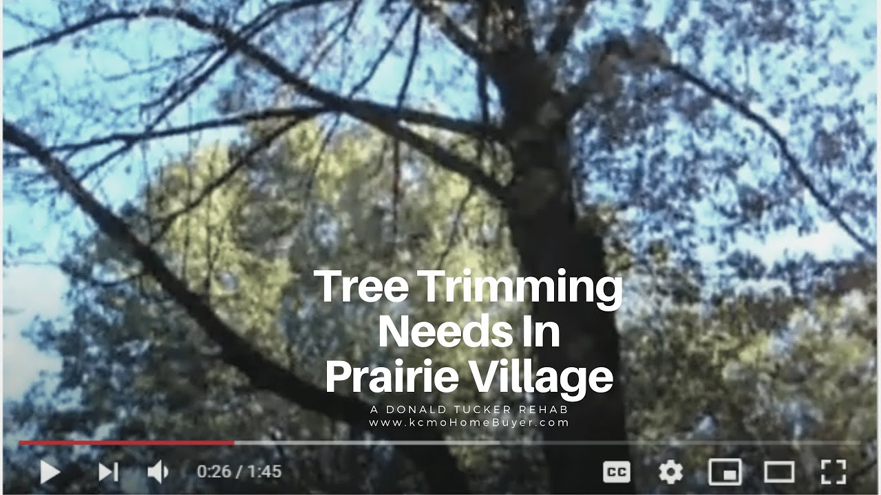 Donald Tucker Rehab:  Tree Issues in Prairie Village at kcmoHomeBuyer.com