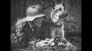ドイツ兵と動物