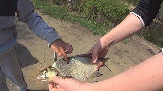Рыбалка на белоярке 2019
