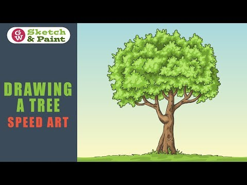 Drawing A Tree With Adobe Illustrator - Speed Art