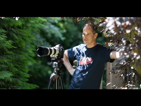 Wedding photography Kent - Alan Harbord