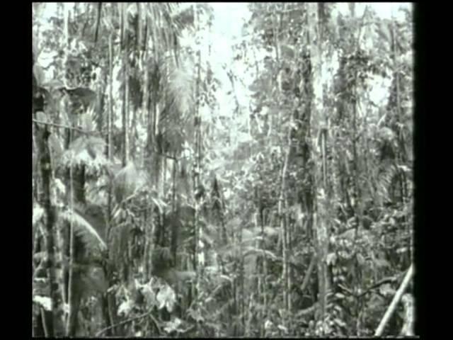 Suriname   Geschiedenis deel 13