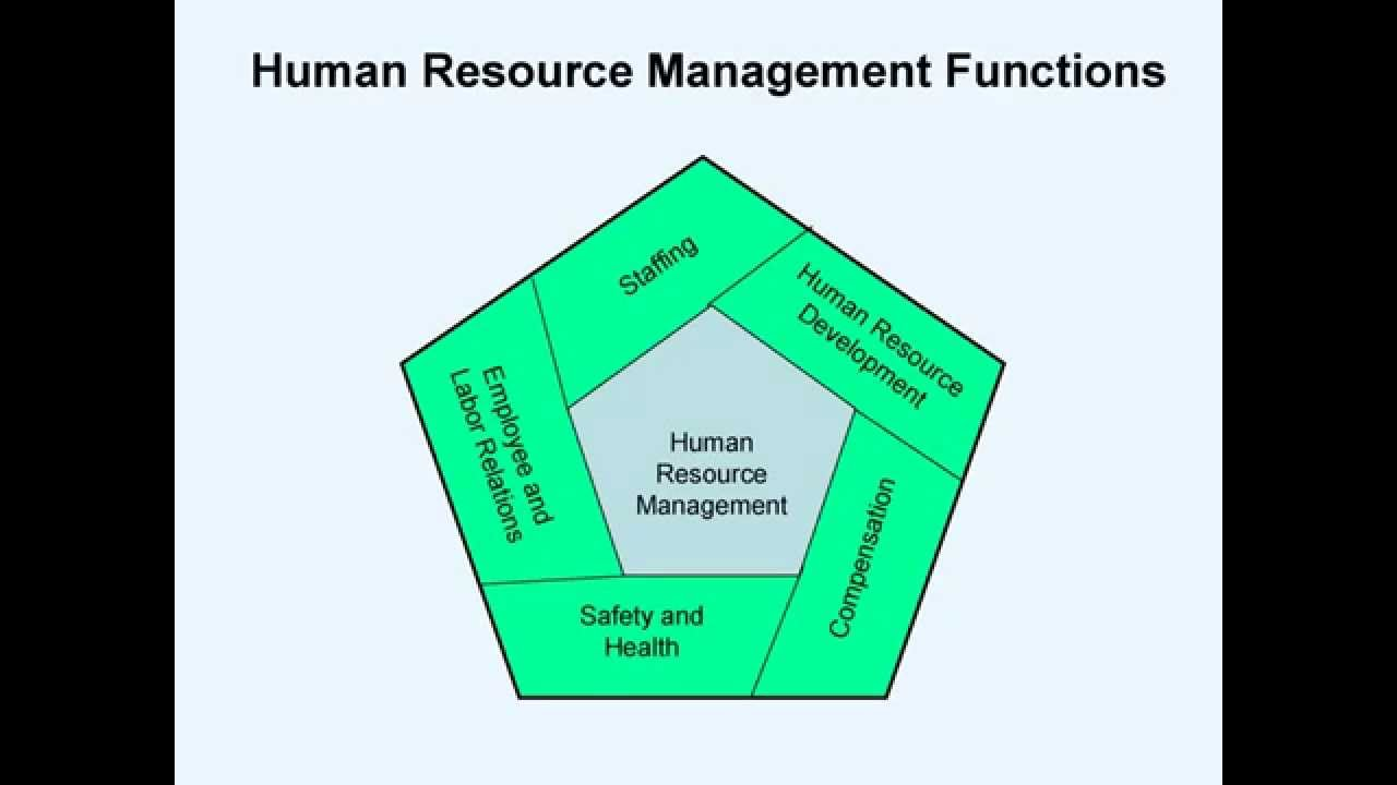management and hr function hr The primary function of human resources is to ensure the company the core responsibilities of human resources in seven major categories of hr management.