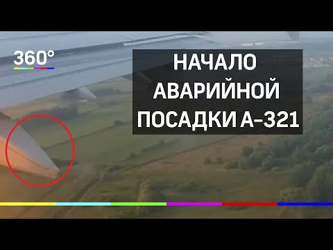 Начало аварийной посадки A-321. Видео из салона самолёта