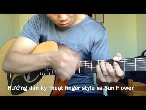 Hướng dẫn sun flower paddy sun