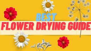 Dry Flowers 5 Ways, DIY (2019)