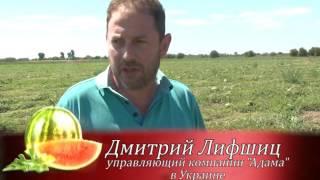 видео Мировая аграрная экономика