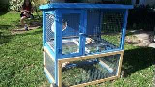 Rabbit Hutch For Free!