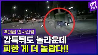 [블랙박스 영상]늦은 밤 도로 위에 느닷없이?