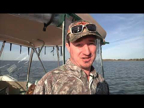 Lake Marion Catfish