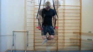 Jungle Gym Xt Workout