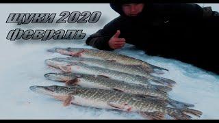 Зимняя рыбалка в феврале 2020.Крупная щука на жерлицы в Казахстане