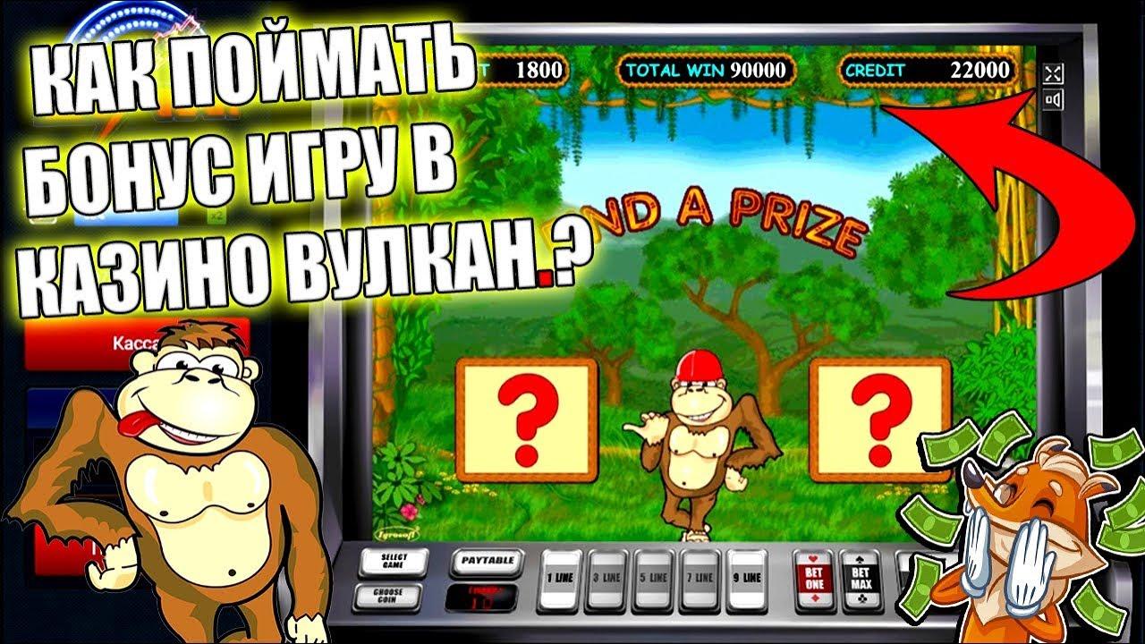 официальный сайт как научиться играть в автомат в казино