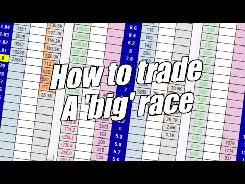 Peter Webb - Betfair trading - Trading a big race at Cheltenham