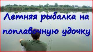 Рыбалка. Карась и плотва в августе.