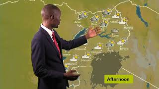 Weather forecast for 21 06 2019