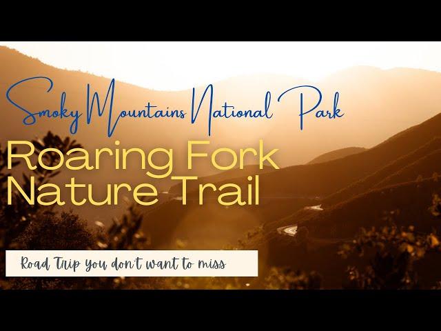 Stunning views of Roaring fork Motor Trail | Smokey Mountains  #InfiniteWanderlust