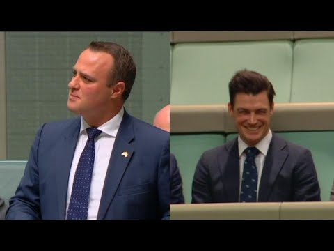 Australian Lawmaker Proposes to His Partner During Same-Sex Marriage Debate