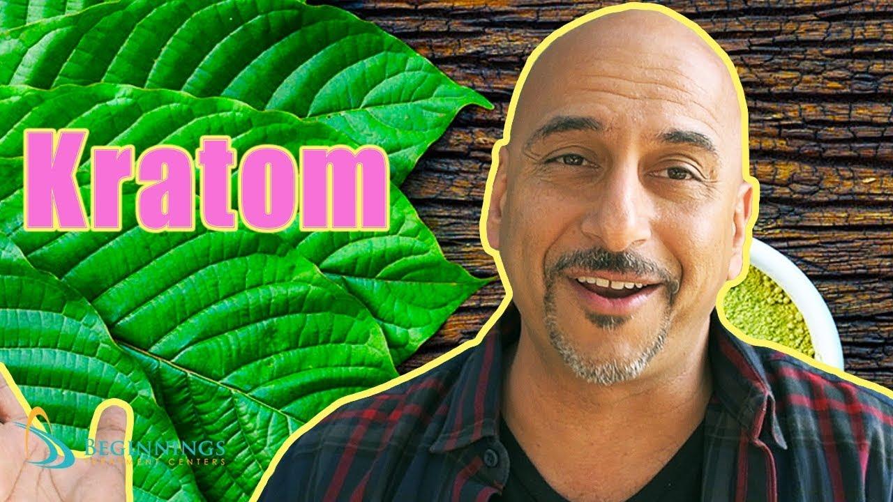 What is Kratom like? Real Experience!   Beginnings Treatment