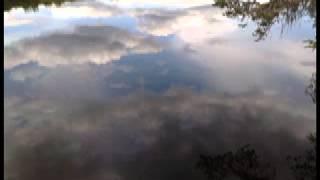 Adyashanti - The process brings me alot of physical pain!?