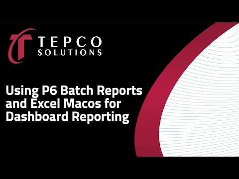 TEPCO - Using P6 Batch Reports and Excel Macros for Dashboard Reporting