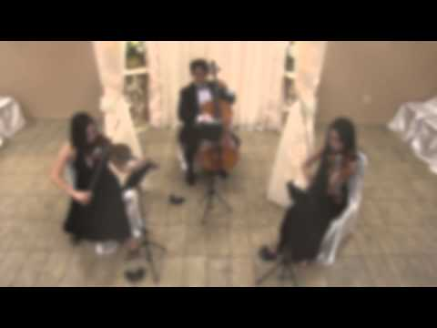 Viol Consort -