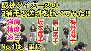 強肩⁉︎ 阪神タイガース3捕手の送球を比べてみた!!(梅野選手・坂本選手・原口選手)