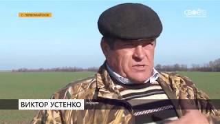 Земли пайщиков в Ипатовском районе заморозили