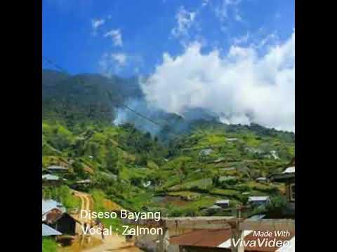 Zalmon