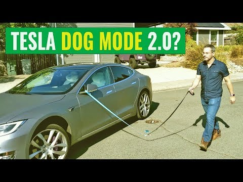Fun with Tesla's Enhanced Smart Summon: Dog Mode 2.0?