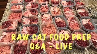 Raw cat food prep with Q&A