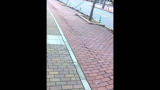 2011.03.11 地震で波打つ歩道